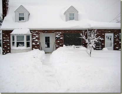 Snow Pictures 231