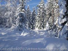 winter '09-'10 013