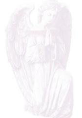 angelguardian