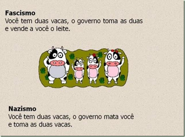 vaca3