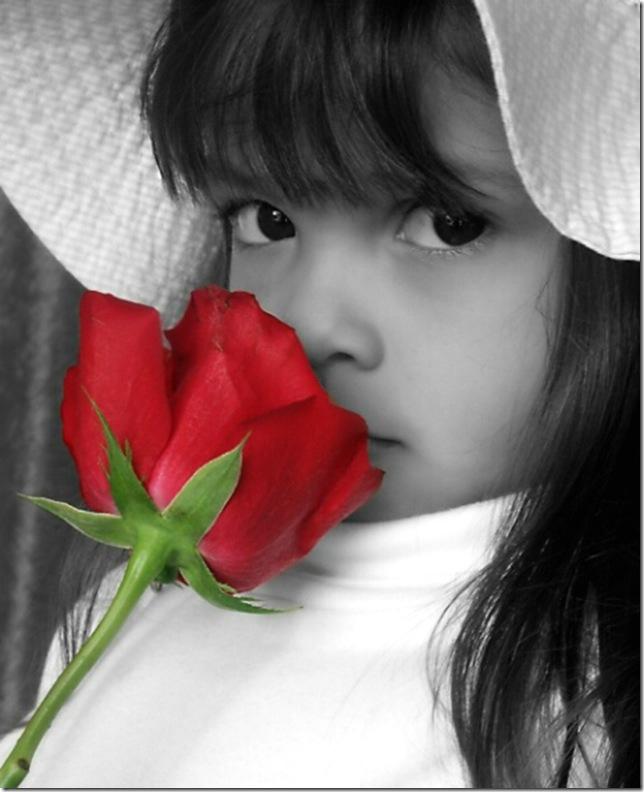vermelho13