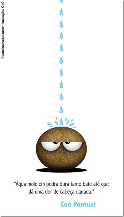 agua mole