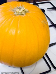 PumpkinCarving-4426