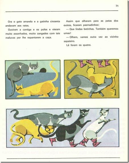 gatos janotas sn3