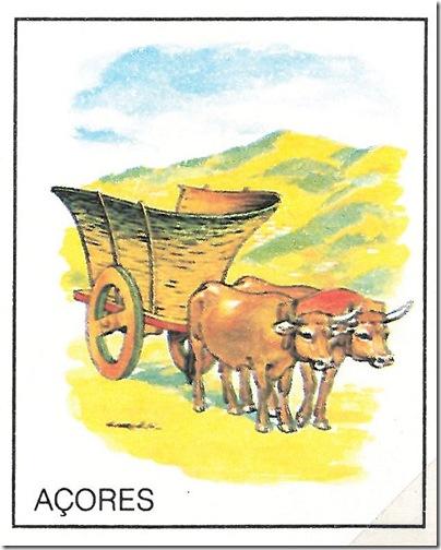 carros_tradicionais_acores_01