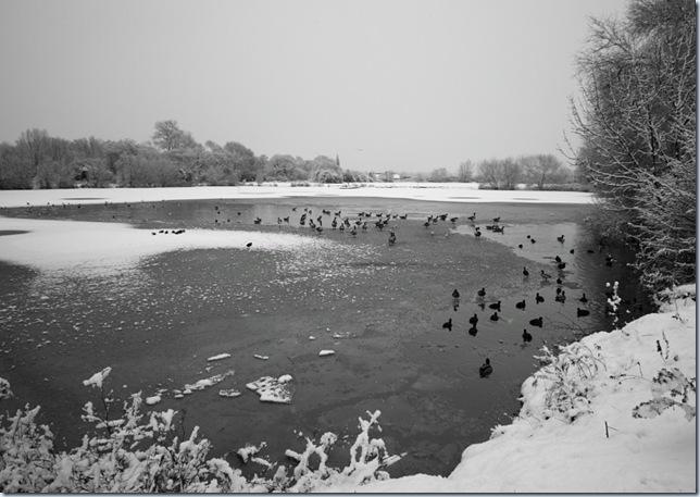 roding_snow1