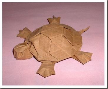 P_Turtle_Romain