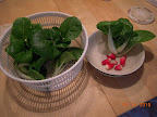 Toy choi and radishes
