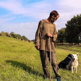 Shepherd and his dogs by Goran Matejin - People Portraits of Men ( field, shepherd, dogs, nature, forest, keeping, cows )