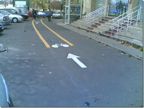 pista bicicleta (3)