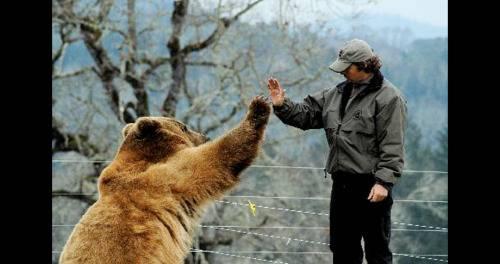 Bear & Man