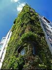 athenaeum_hotel__london_4.jpg