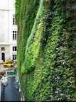 rue_d_alsace_paris_2.jpg