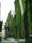 rue_d_alsace_paris_4.jpg