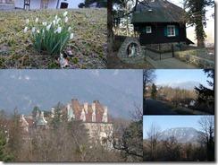 Reichenau I 2011