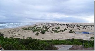 300px-Stockton_Beach_-_north_eastern_end