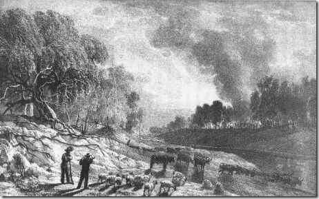 Bushfire, Victoria, 1851