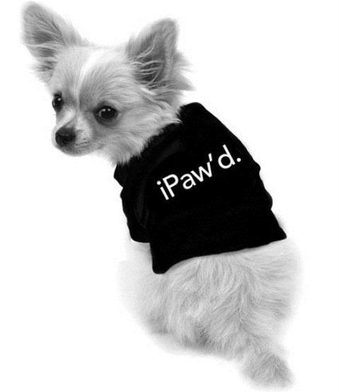 i_dog_ipawd_grande
