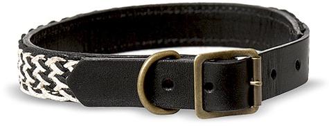 BIP_collar_2