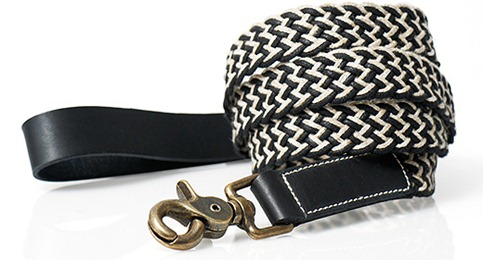 BIP_leash_2