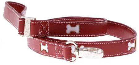 Hamishmb_bones red leash_2