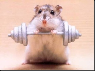 strongmouse