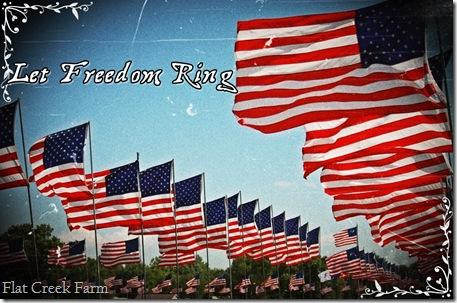freedom_ring