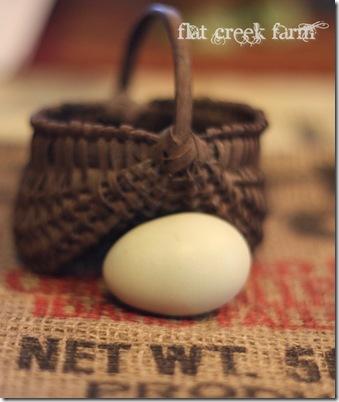 first_egg