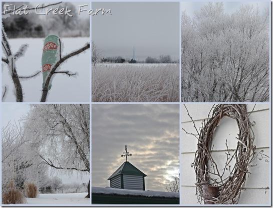 1-26-11 frozen fog mosaic