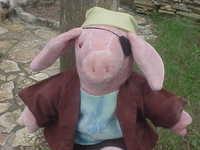 Pirate Piggy - arggh!