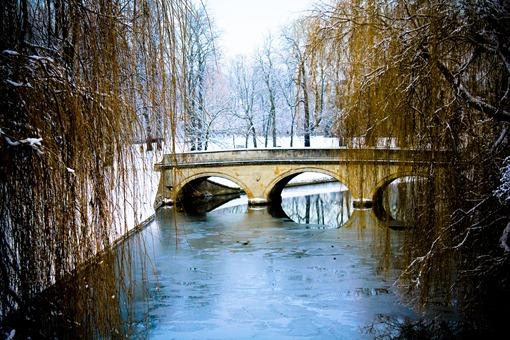 Cambridge Snow-85