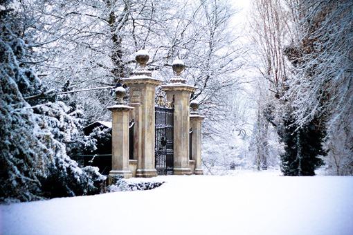 Cambridge Snow-109
