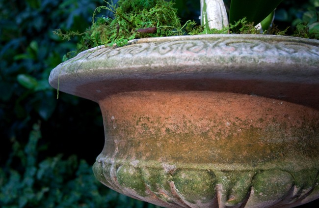 Campo-Urn-at-Sunset