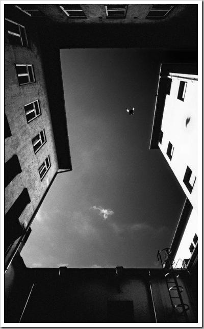 Szabadulásvágy - Újpest, 2005