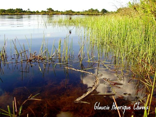 Araguari, a bela do Triângulo Mineiro TfytH