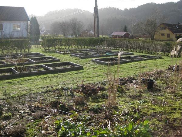 2009-03-08 Hagen i mars (12)