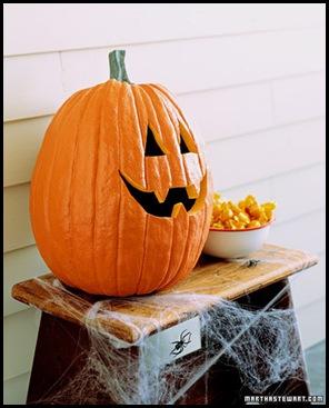 ka100205_fal03_pumpkin_xl