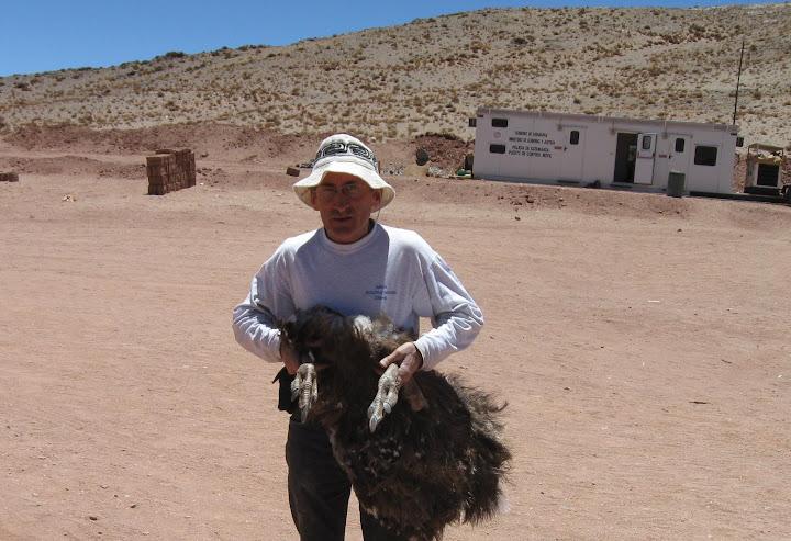 LEJARRETA EN LOS ANDES (2009) 05.Ismael%20con%20Suri