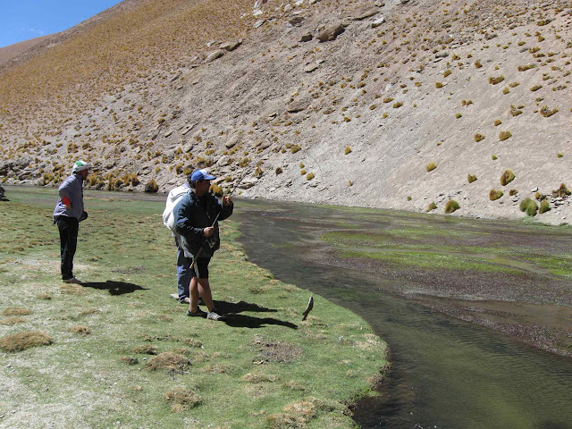 LEJARRETA EN LOS ANDES (2009) 30.pescando%20truchas%20en%20rio%20de%20los%20patos