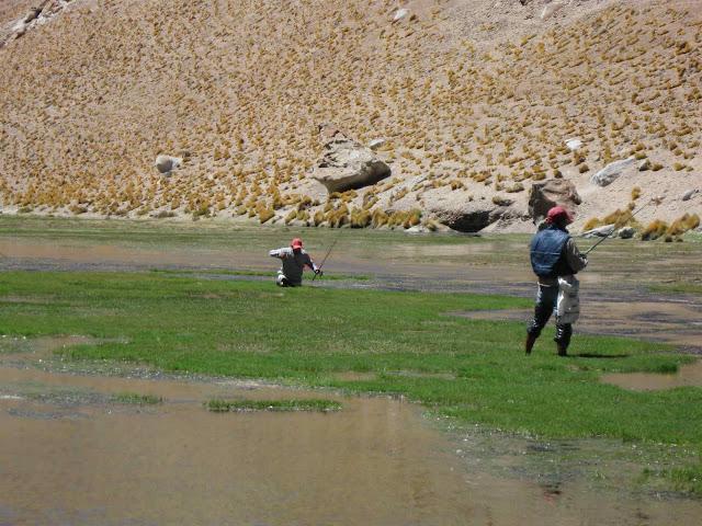 LEJARRETA EN LOS ANDES (2009) 28.pescando%20truchas%20en%20rio%20de%20los%20patos