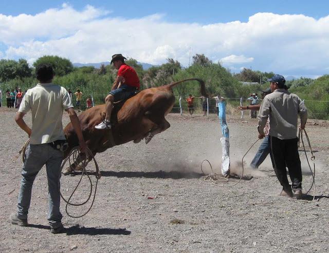 LEJARRETA EN LOS ANDES (2009) 27%2Cdoma