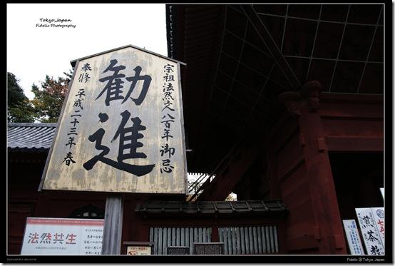 Shibakoen20
