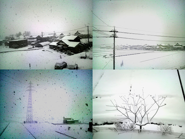 朝の雪の写真
