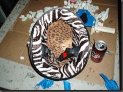 helmets oct2010 006