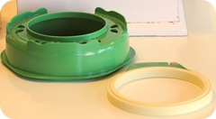 Clover Hoop and Stand