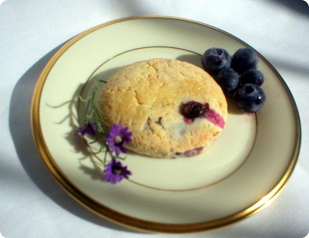 blueberry scone 7