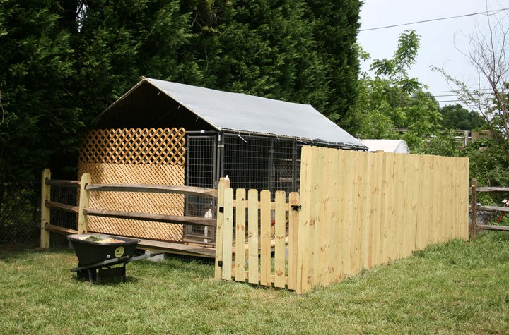 Outdoor cat runs quotes for Carport dog kennels
