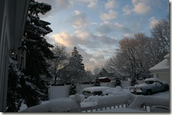 January 2010 371
