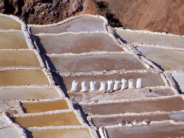 Bags of harvested salt lined up next to the salt pools in Maras