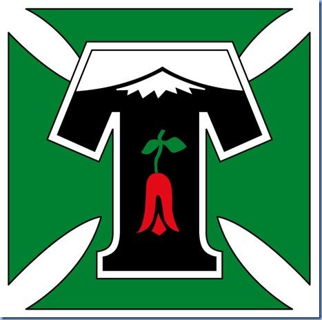 Emblema de Temuco light
